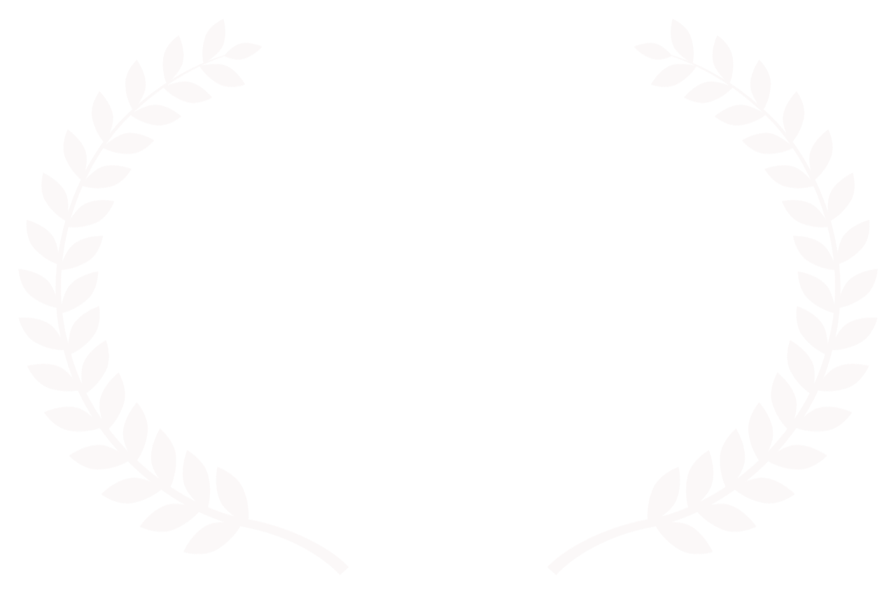 OFFICIAL SELECTION - Maverick Movie Awards - 2017