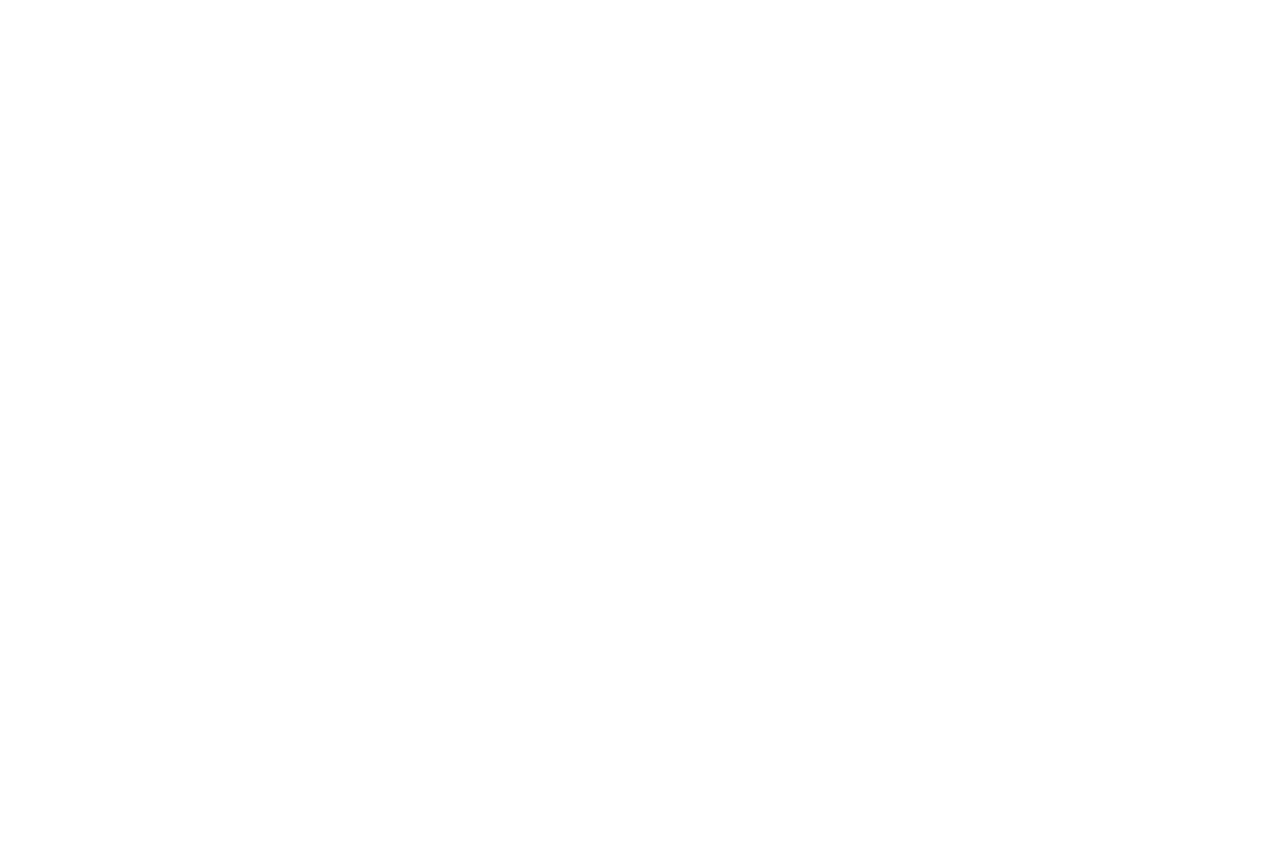 AWARD WINNER - Hollywood International Indipendent Documentary Awards